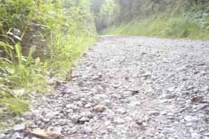 Für Radfahrer besonders störend: der grobe Schotterbelag an vielen Stellen des Remstalradweges
